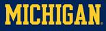 NCAA-Big 10-1996 Michigan Wolverines maize wordmark-navy background
