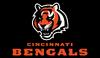 AFL-NFL-AFC-CIN-2021 Bengals mascot and wordmark alternate logo-Black