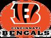 AFL-NFL-AFC-CIN-2021 Bengals B wordmark alternate logo-Black