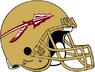 NCAA-ACC-Florida State Seminoles Gold helmet & facemask