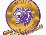 2018 Bethel (TN) Wildcats