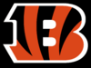 NFL-AFC-CIN-Bengals B alternate logo-Black background