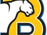 Birmingham-Southern Panthers