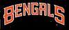 Cincinnati Bengals black wordmark (1997-2003)
