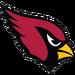 NFL-NFCW-ARI logo.png