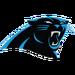 NFL-NFCS-CAR logo 12present.png