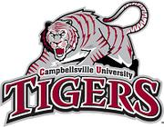 Campbellsville Tigers.png