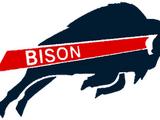 2011 Howard Bison