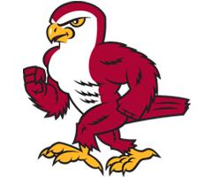 2019 Friends Falcons