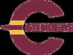 Logotip Stingers de Concordia.png