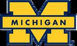 NCAA-Big 10-1996 Michigan Wolverines maize secondary logo