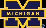 NCAA-Big 10-1988-1996 Michigan Wolverines navy blue secondary logo