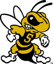 West-Virginia-State-Yellow-Jackets.jpg