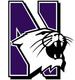 NCAA-Big 10-Northwestern Wildcats main logo.png