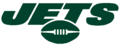 NFL-AFC-NY Jets wordmark logo 2019