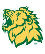 Missouri Southern Lions.jpg