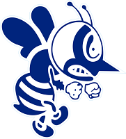2019 St. Ambrose Fighting Bees