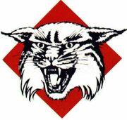 Davidson Wildcats.jpg