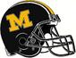 NCAA-SEC-Mizzou Tigers Retro Black helmet m logo