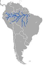 Amazonian Manatee area.png