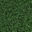 Grasstaiga.png