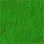 Grasstemperate.png