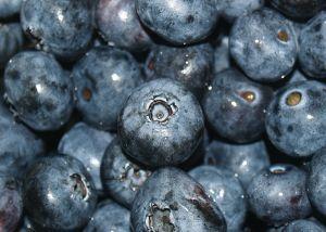 581612 blueberries.jpg