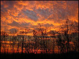 Dawn-6960.jpg