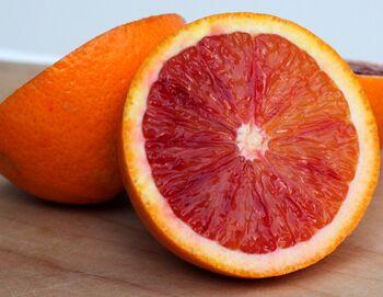 Blood Orange.jpg