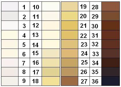 Skin color shart.jpg