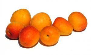 799495 apricots 1.jpg