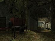 Brushwood5