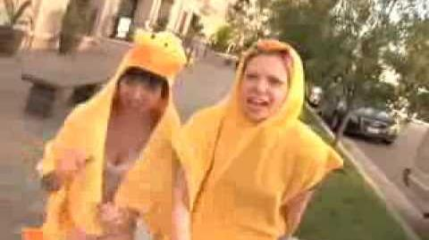 Sex With Ducks the Music Video by Garfunkel and Oates