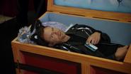 Jeff Winger (Dead Cool Cat)