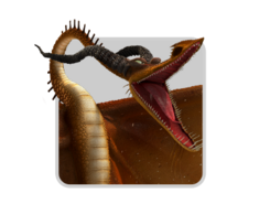 Dragons icon timber