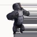 Taxidermied Gorilla