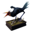 Icon trophystnd forestbird.png