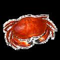 Icon cookedShellFish.png