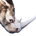 Greater Siptah Rhinoceros