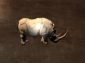 Pet White Rhino.png