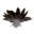 Icon black lotus flower.png