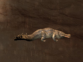 Pet Greater Crocodile.png