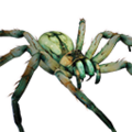 Icon pet Spider Green.png