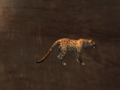 Pet Jaguar.png