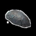 Shaleback Hatchling Shell