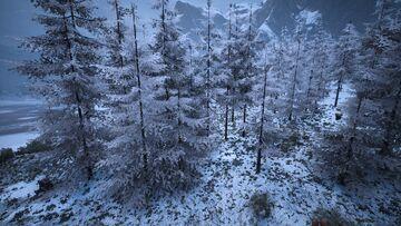 Frostneedleforest2.jpg