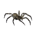 Icon baby spiderling.png