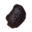 Icon chitin.png