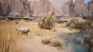 Biomes Savannah Scene.jpg