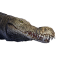 Icon pet Crocodile Alpha.png